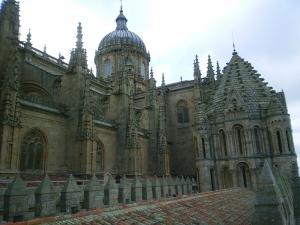 Catedral de San Jerónimo [Salamanca, España]